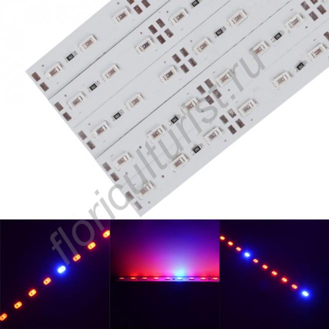 Фитолинейка на базе светодиодов SMD5630