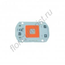 Биколорный бездрайверный светодиодный чип мощностью 30Вт
